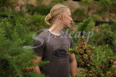 Korda tričko Carp In Hand T-Shirt - 2