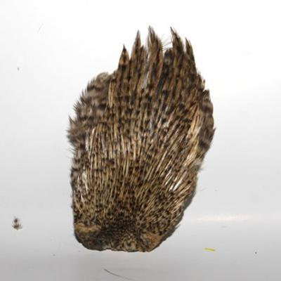 Hends kohout skalp Cock Capes - 2