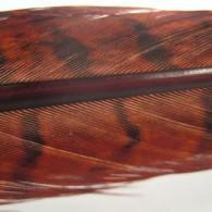 Hends bažantí peří Pheasant Tail - 6